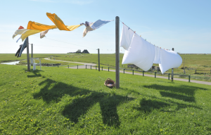 eco green dry cleaning